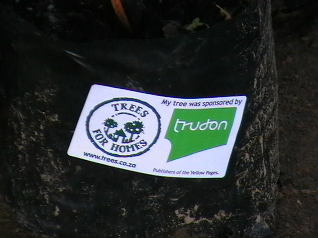 Trudon_sponsor_tree